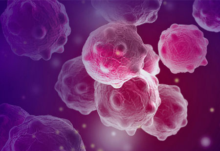 Environment Affects the Growth of Immune Cells